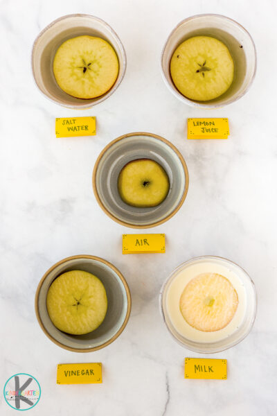Science experiments with apples