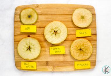 Why Apples Turn Brown