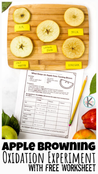 This simple, but fascinatingapple oxidation experiment allows children to learnwhy apples turn brown andwhat prevents apples from browing with a hands-on apple science experiment.Try thisapple activity for kids this September with pre-k, kindergarten, first grade, 2nd grade, and 3rd graders too. Simply printapple worksheet and you are ready to try thisapple browning experiment!